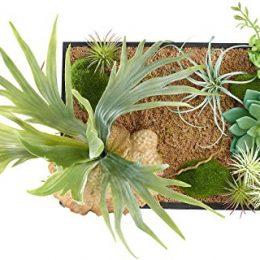 Pflanzenbilder ein st ck natur f r die wohnung gr ne deko for Pflanzen deko wand