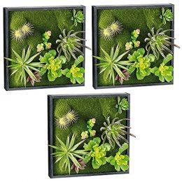 Wandgarten karl mit deko pflanzen 30 x 30 cm for Pflanzen deko wand