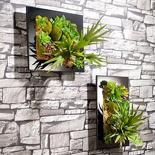 carlo milano pflanzenbild vertikaler wandgarten anna. Black Bedroom Furniture Sets. Home Design Ideas