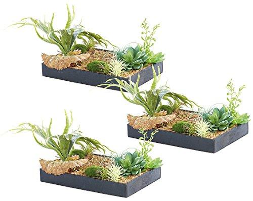 carlo milano wandbepflanzungen vertikaler wandgarten. Black Bedroom Furniture Sets. Home Design Ideas