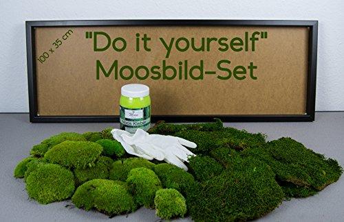 DIY Moosbild selber machen, Wandbilder selber kleben, Moosbilder selbst  gestalten Do it yourself Set Moos kleben Wanddeko selbst herstellen  Wandbild ...